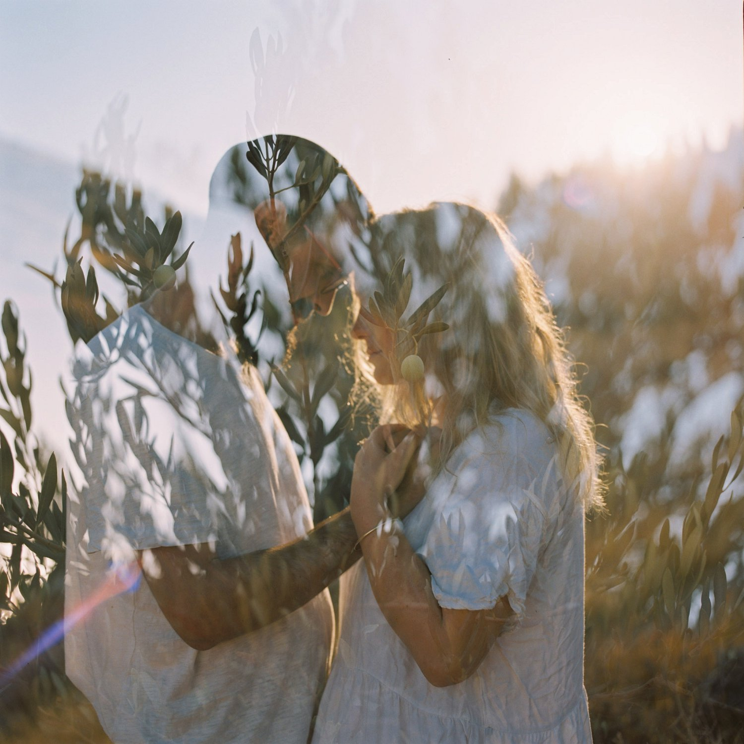 Double-exposure of couple and olive tree during Judean Hills engagement session