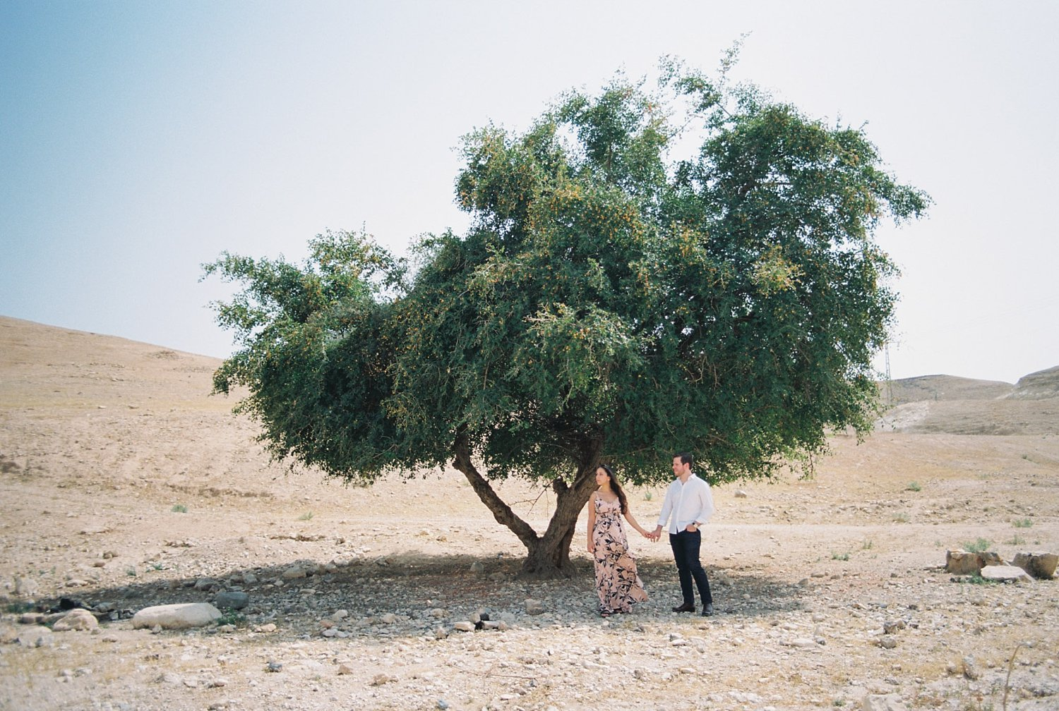 Couple holding hands in front of tree during Judean desert engagement session